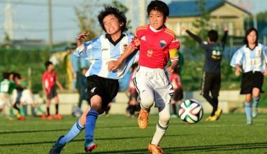 【第39回全日本少年サッカー大会神奈川県大会 2回戦】田奈SC vs FC高坂